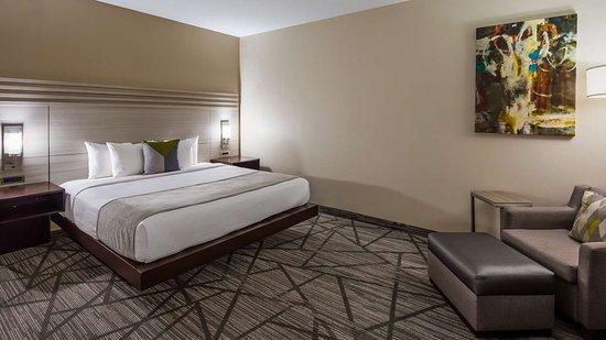 hotels in Houston