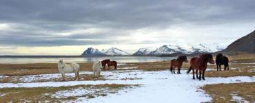 Six Senses Iceland