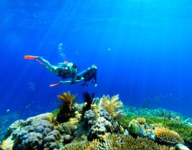 Coral Expeditions Unveils New Great Barrier Reef Expeditions