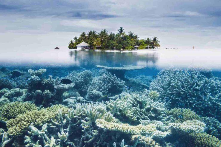 Maldives lufthansa