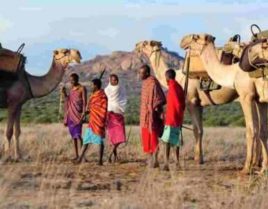 Safari Laikipia Kenya
