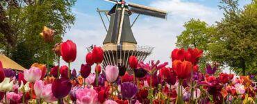 Floriade Expo