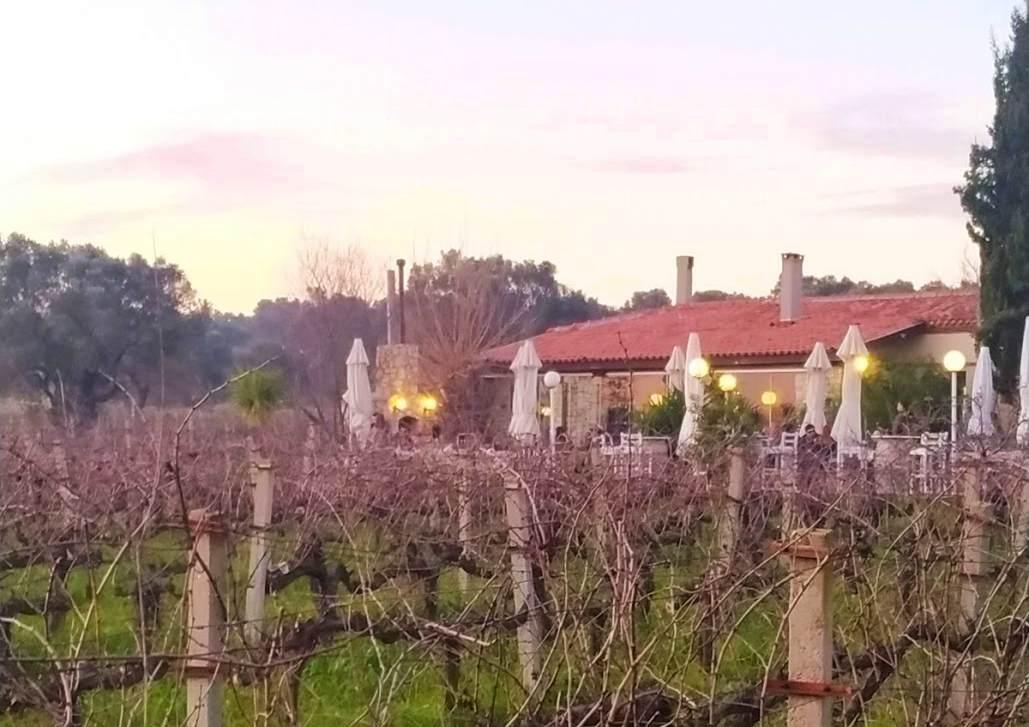 urlice wineries Urla